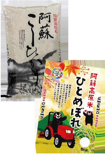 特別栽培米 熊本県産 阿蘇こしひかり